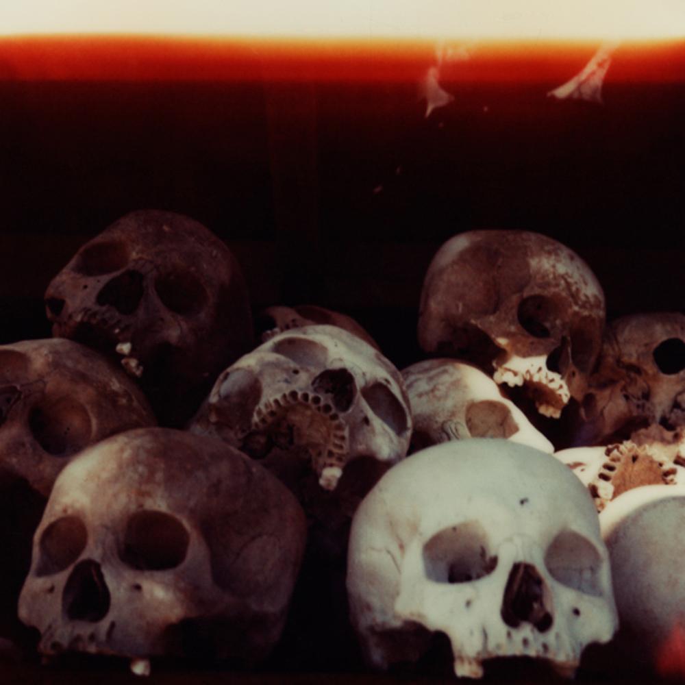 20080601-Skulls